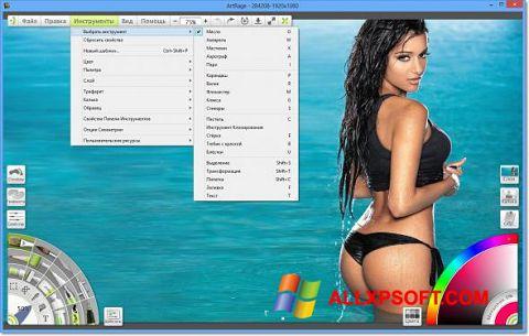 Στιγμιότυπο οθόνης ArtRage Windows XP