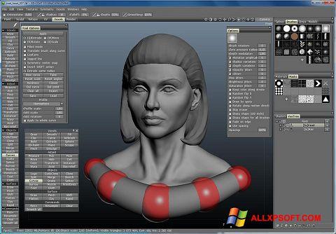 Στιγμιότυπο οθόνης 3D-Coat Windows XP