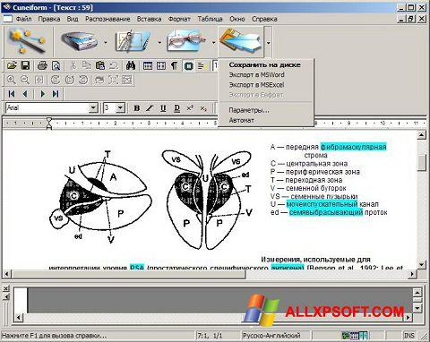 Στιγμιότυπο οθόνης CuneiForm Windows XP
