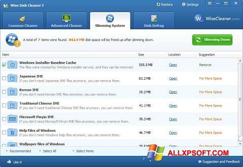 Στιγμιότυπο οθόνης Wise Disk Cleaner Windows XP