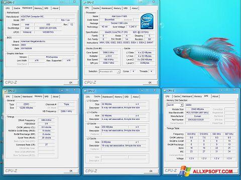 Στιγμιότυπο οθόνης CPU-Z Windows XP