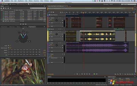 Στιγμιότυπο οθόνης Adobe Audition Windows XP